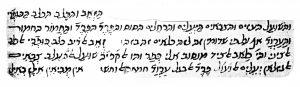 """פירוש הרמב""""ם למשנה במסכת כלאיים א. ו (אוטוגרף)"""