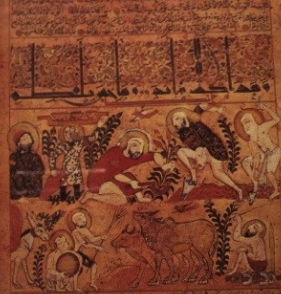 Working the land, a medieval Arabic treatise